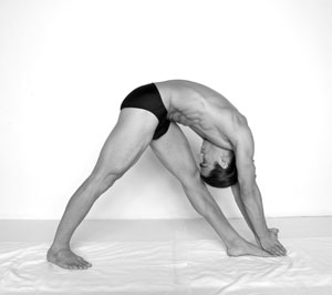 Standing Separate Leg Head to Knee Pose